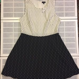The Limited women's plus size 16 polka dot dress